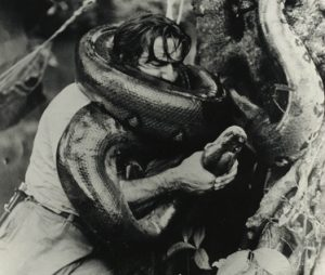 Para quien piense que lo que hace Frank Cuesta es nuevo, este hombre ya atrapaba serpientes hace más de 50 años